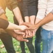 Multiracial Group of Friends with Hands in Stack, Teamwork — Stock Photo #59416267