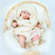 The kid in a basket — Stock Photo #74266367