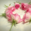 Pink roses in the shape of a circle — Stock Photo #66808647
