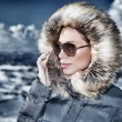 Fashionable winter style — Foto Stock #58522537