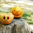 Pumpkins for holiday Halloween on old tree stump — Stock Photo #56596025