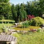 Beautiful classical garden fish pond gardening background — Stock Photo #75453795