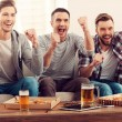 Men watching football game — Stock Photo #73022273