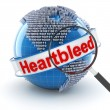 Heartbleed bug with digital globe and magnifying glass — Stock Photo #62114221