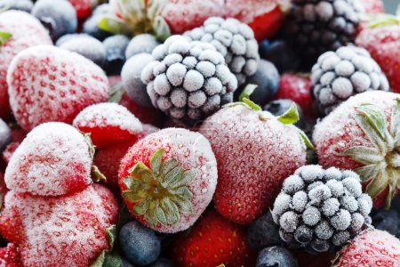 冷冻的浆果