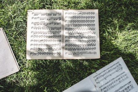 音乐书与笔记在草地上