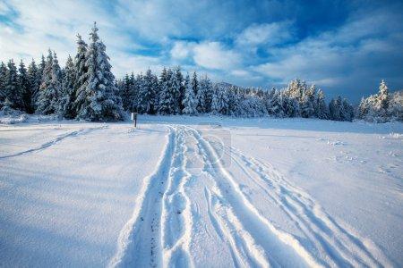 Vinterväg冬天路