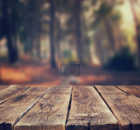 Image of front rustic wood boards and background of trees in forest. image is retro toned