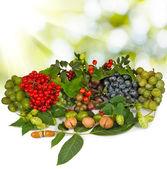 图像的不同的莓果,在白色背景特写