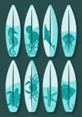 冲浪板镶有蓝色的海中生物绘图