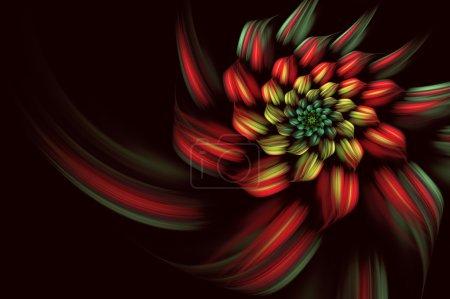 抽象形背景、 螺旋、 花
