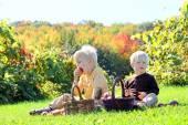 年幼的孩子在苹果园水果野餐