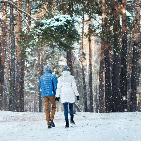 热恋中在冬季森林散步的情侣