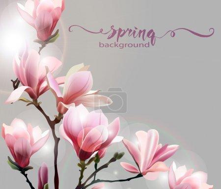 春天背景与玉兰花开早午餐