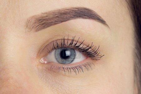 表达显性显性的眼睛完美的眉毛形状 _高清图片_邑石网