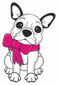 dog with a pink bow