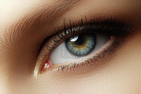 眼部化妆。美丽的眼睛化妆。节日化妆细节。长长的睫毛。女性的眼睛化妆烟熏眼风格的特写镜头_高清图片_邑石网