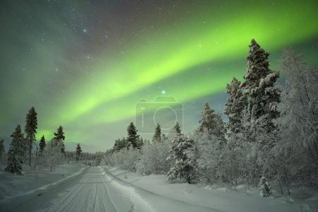 Aurora borealis over a track through winter landscape, Finnish L