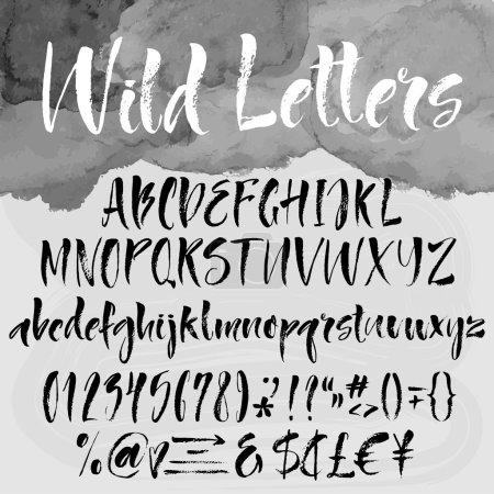 套刷刻字按字母顺序排列