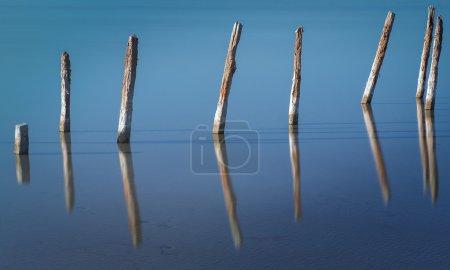 在水中的木棍