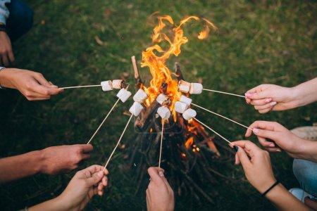 枝,棉花糖上面篝火